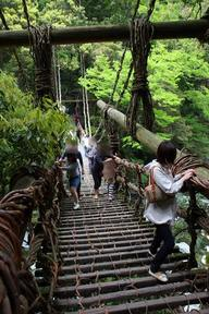 かずら橋2