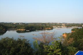 2006-7