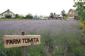 富良野FARM1
