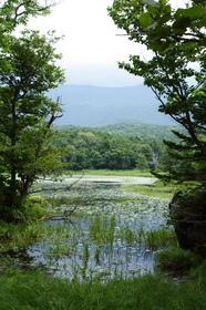 知床五湖3