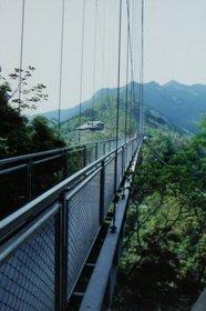 綾の大吊橋